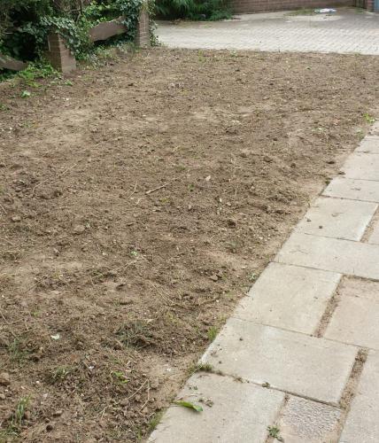 Tuinman gezocht nijmegen tuin aanleggen 40 m2 for Tuin aanleggen nijmegen