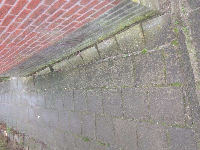 Tuintegels Zuid Holland.Stratenmaker Gezocht Barendrecht Ophogen Goed Leggen Tuintegels En Pad