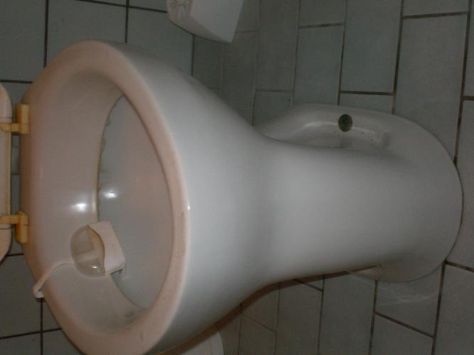 Duoblok Toilet Gamma : Badkamerinstallateur gezocht culemborg oude wc vervangen duoblok