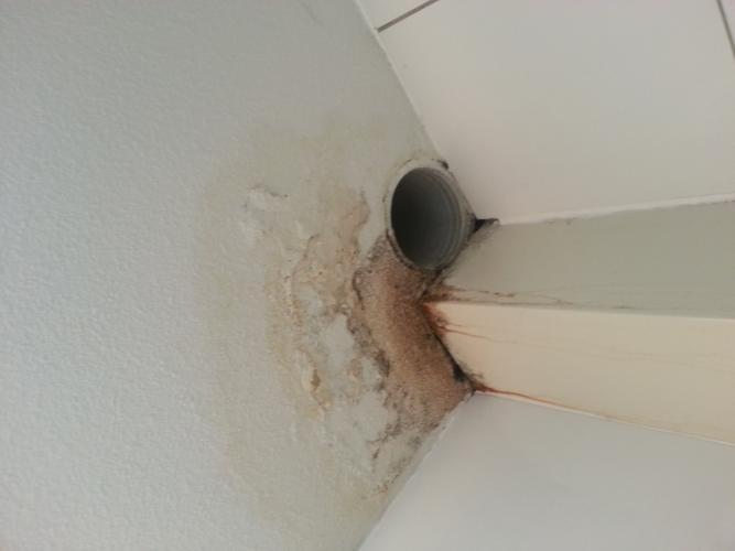Badkamer Duiven : Loodgieter gezocht: Duiven, Lekkage plafond wc